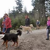 2014-04-13 - Waldführung am kleinen Waldstein (von Uwe Look) - DSC_0401.JPG