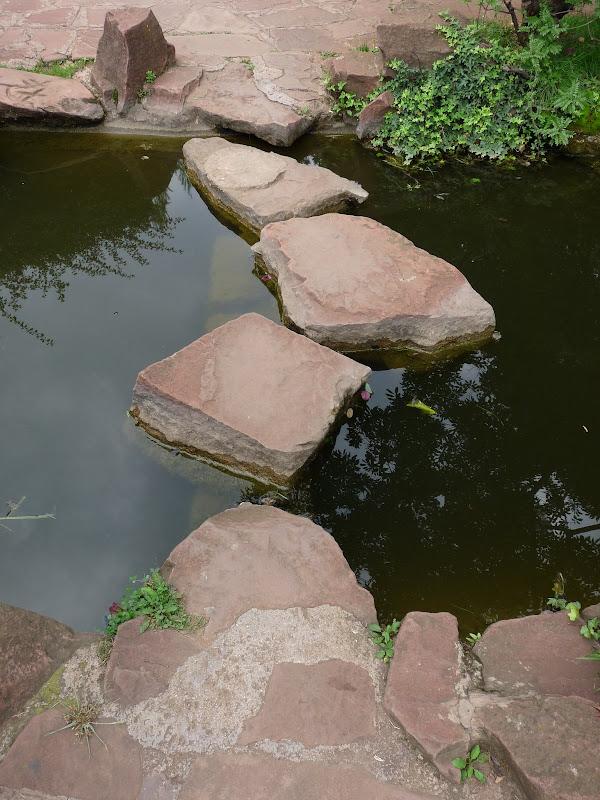 CHINE.YUNNAN.KUN MING Temple, jardin horticole,Musée des minorites - P1270311.JPG