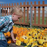 Pumpkin Patch 2015 - 100_0401.JPG