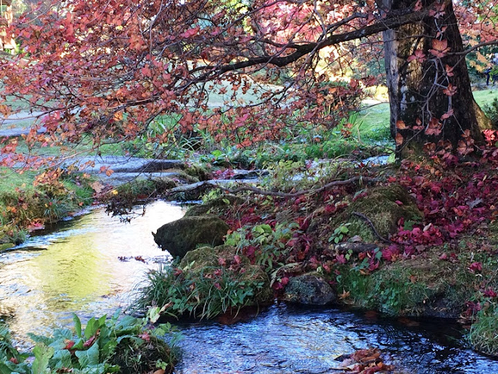 Осенняя Япония, или По следам цветных листьев (2-16 ноября 2014)