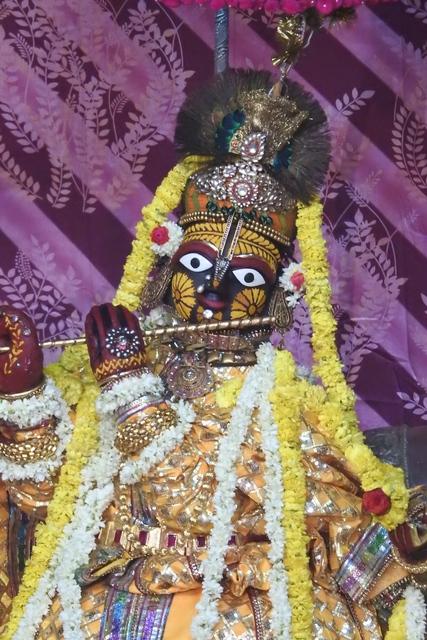Radha Govinda Devji Deity Darshan 23 April 2016 (11)