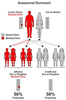 Random genetic mutation