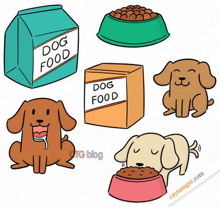 Thức ăn hạt khô có tốt và đủ dưỡng chất cho chó mèo hay không?
