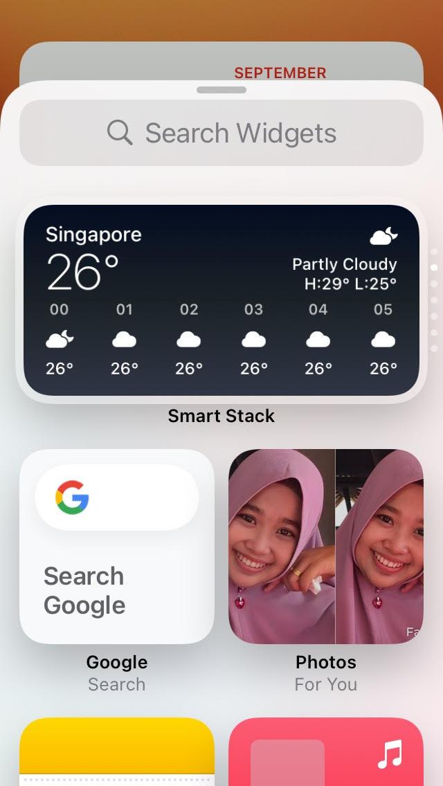 Search Widget Google