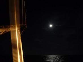 Photo: ・・・しかし、食いが悪い! お月さんのせいか?