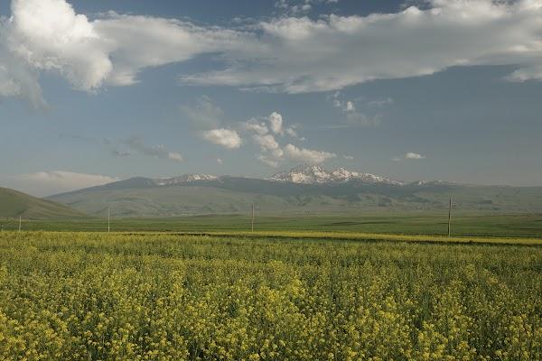 Blick auf den Berg Aragaz