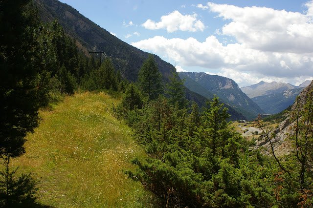 Biotope de Parnassius apollo. La Blachière (Maurin). À droite, la vallée de l'Ubaye (vue vers l'ouest). 13 août 2009. Photo : J.-M. Gayman