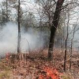 Anderson Creek Hunting Habitat - photo%2525201.JPG