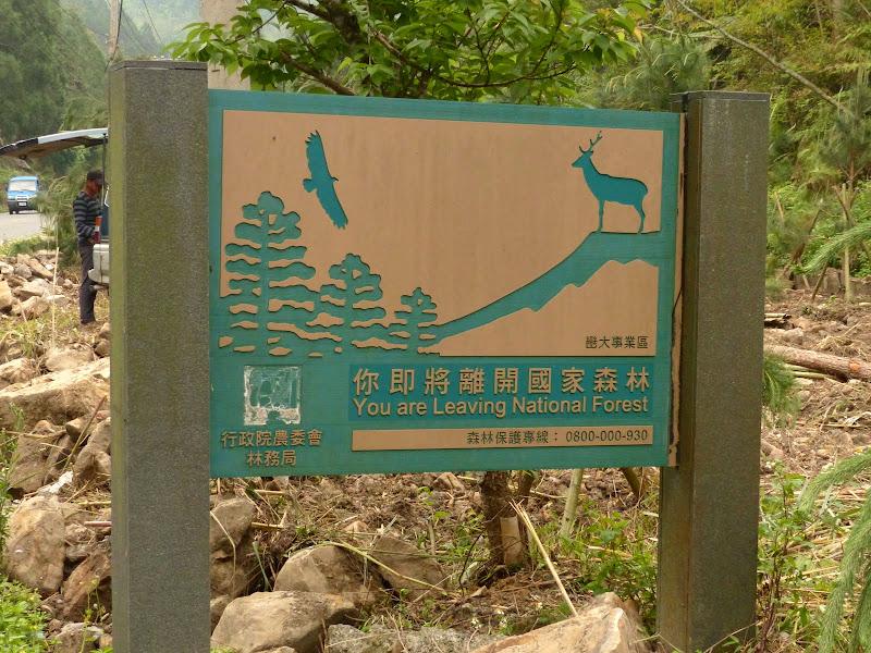 Puli, Nantou county, cueillette de thé - P1050668.JPG