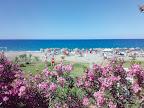 Фото 10 Sun Fire Beach Hotel