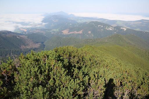 Chočské vrchy z Ostrej