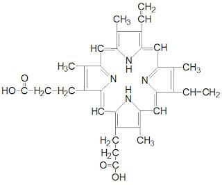 protoporfirina