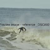 _DSC8931.JPG
