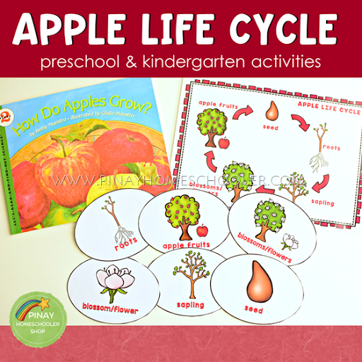 image about Apple Life Cycle Printable named Daily life Cycle of Apples for Preschoolers The Pinay Homeschooler