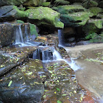 Somersby Falls - bottom falls (177282)