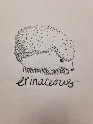 97 Hearts erinacious hedgehog drawing