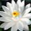 Sonam Agarwal's profile photo