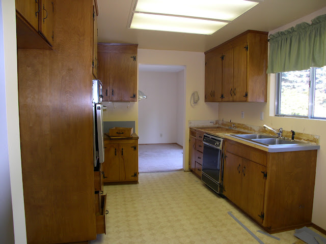The Plain Unwelcoming Kitchen Before