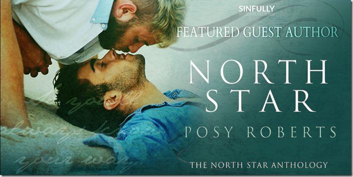 North Star 1