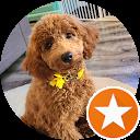 Ken M.,AutoDir