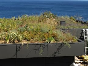 toiture végétale les issambres dans le var