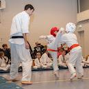 KarateGoes_0152.jpg