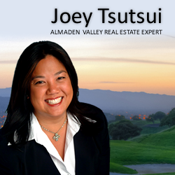 Joey Tsutsui, Alamaden Valley Real Estate Expert