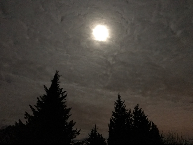 pleine lune dijon