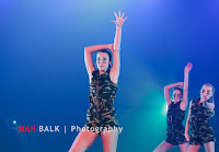 Han Balk VDD2017 ZA avond-9017.jpg
