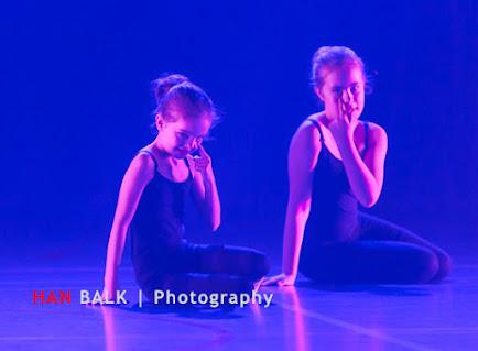 Han Balk Voorster Dansdag 2016-4343.jpg