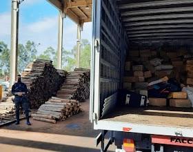 Policia Civil incinera quase 7 toneladas de maconha apreendidas em Uberlândia