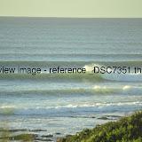 _DSC7351.thumb.jpg