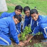 Gurukul Green Revolution (41).jpg