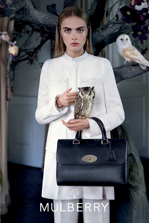 *名模Cara Delevingne手托貓頭鷹:首度拍攝Mulberry秋季形象照! 5
