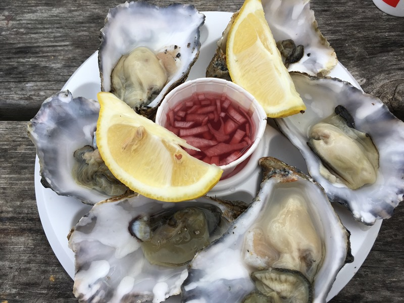 Oysters from the Lobster Shack, Whitstable