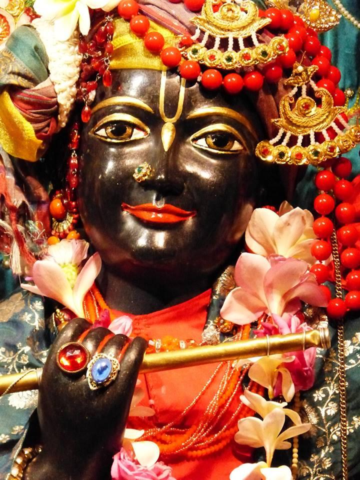 ISKCON New Govardhan Deity Darshan 12 Mar 2016 (20)