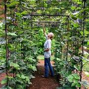 К чему снится работа в огороде?