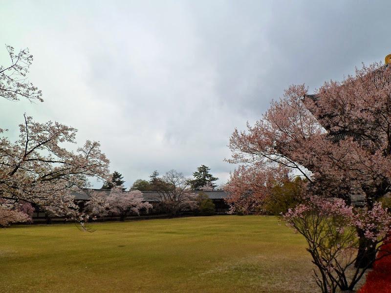 2014 Japan - Dag 8 - tom-SAM_0515-0020.JPG