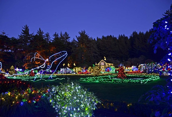 Shore Acres Lights1