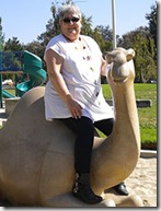 jeri-on-a-camel