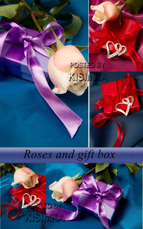 Stock Photo: Roses and gift box