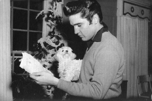 Elvis Presley and his dog Foxhugh