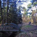 016-Nieuwjaarswandeling met de Bevers.Menno gidst ons door het mooie natuurgebied De Regte Heide te Go+»rle