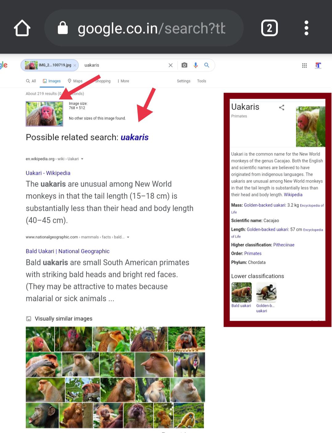 Find details using Google image