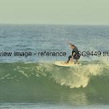 _DSC9449.thumb.jpg