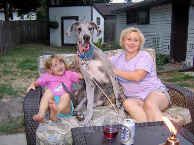 The Dynamite Danes Family! - HeatherCalebCorina.JPG