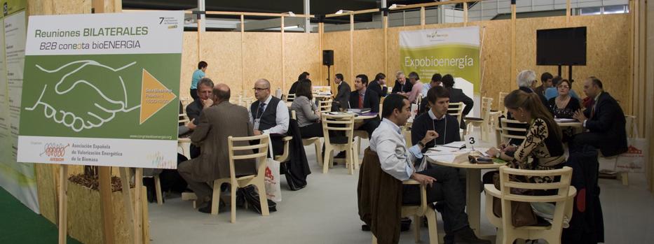 Reuniones B2B en conecta bioenergia 2012