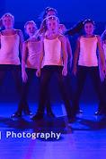 Han Balk Voorster Dansdag 2016-3942.jpg