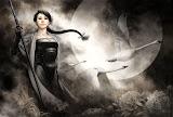 Girl Samurai And White Swans