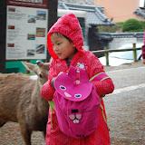 2014 Japan - Dag 8 - jordi-DSC_0440.JPG
